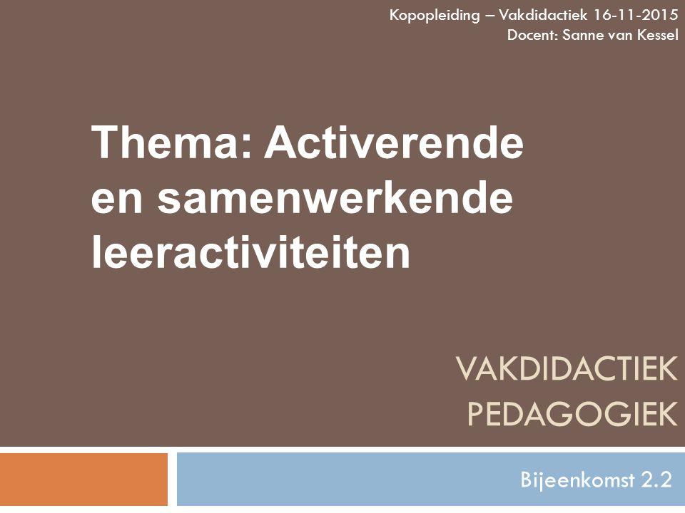 vakdidactiek pedagogiek