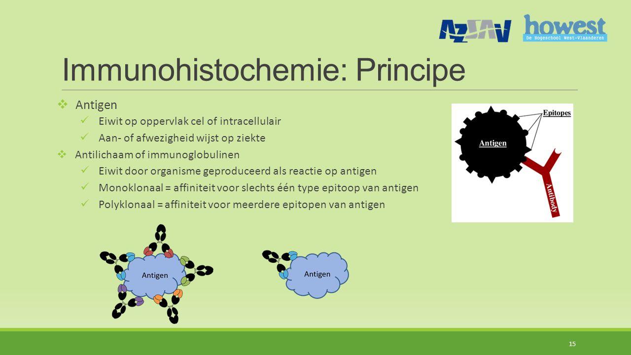 Immunohistochemie: Principe