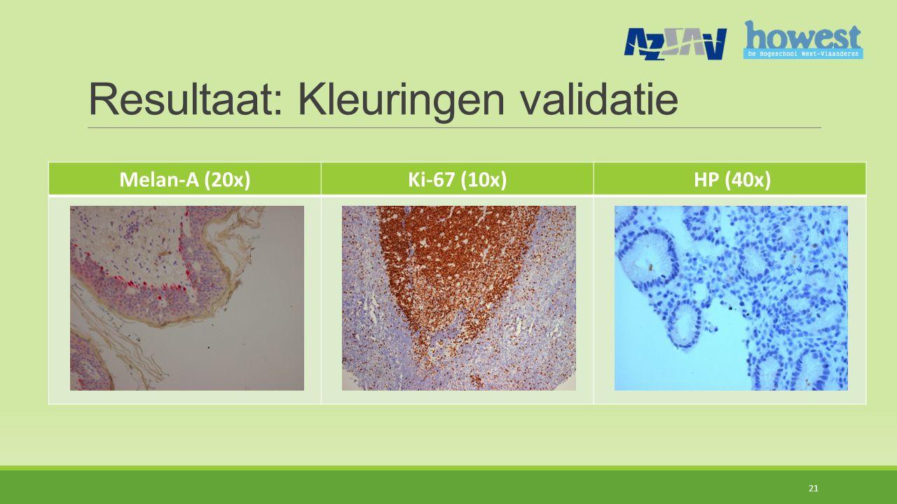 Resultaat: Kleuringen validatie