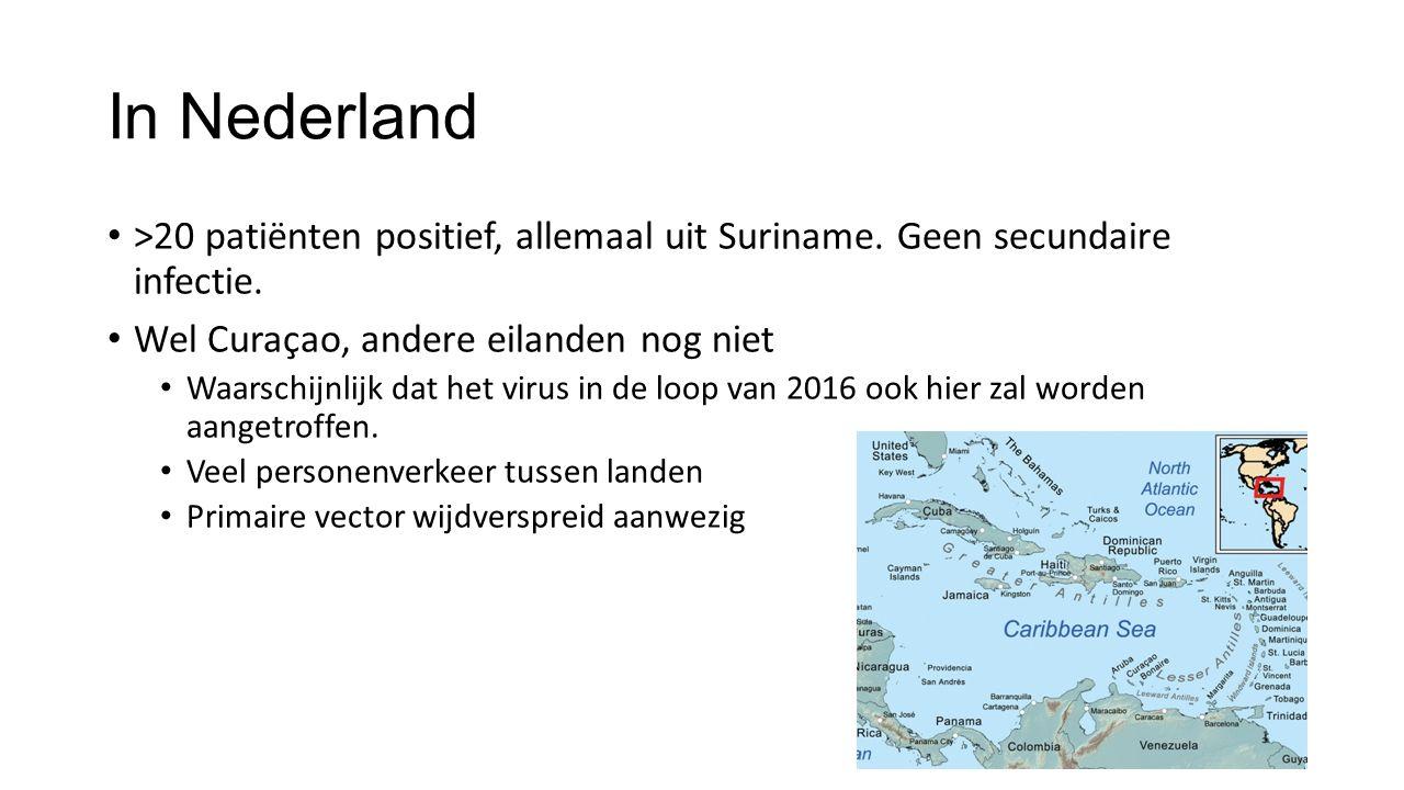 In Nederland >20 patiënten positief, allemaal uit Suriname. Geen secundaire infectie. Wel Curaçao, andere eilanden nog niet.