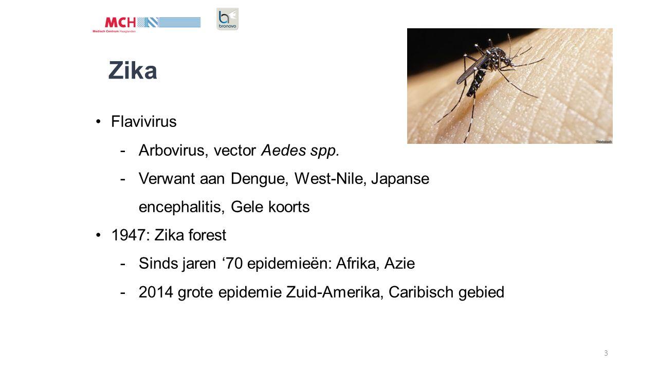 Zika Flavivirus Arbovirus, vector Aedes spp.