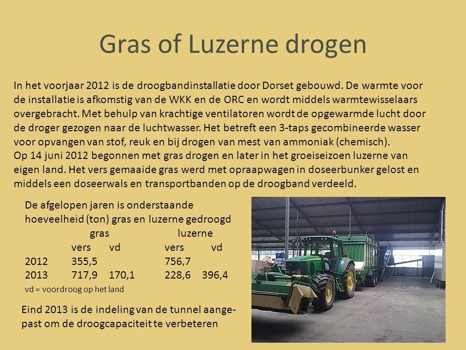 Gras of Luzerne drogen