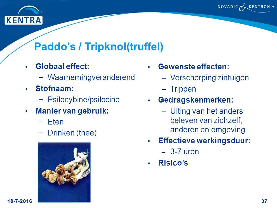 Paddo s / Tripknol(truffel)