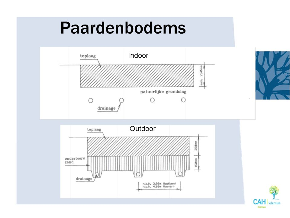 Paardenbodems Indoor Outdoor