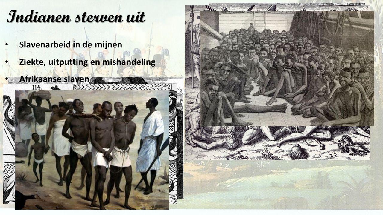 Indianen sterven uit Slavenarbeid in de mijnen
