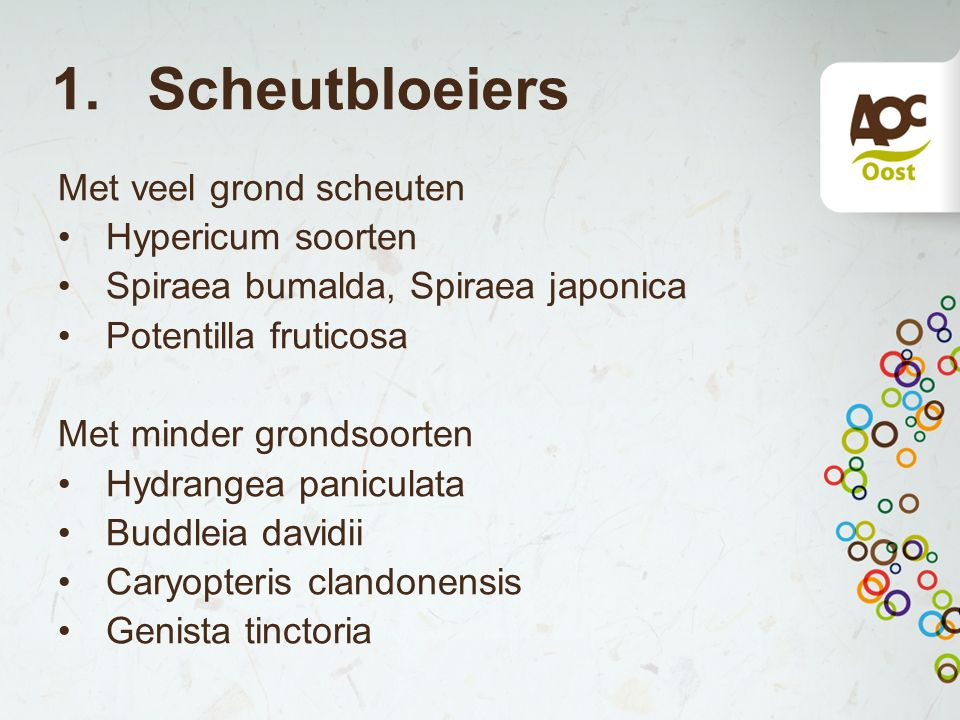 1. Scheutbloeiers Met veel grond scheuten Hypericum soorten