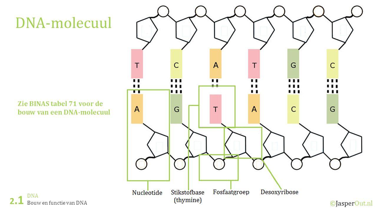 DNA-molecuul 2.1 Zie BINAS tabel 71 voor de bouw van een DNA-molecuul