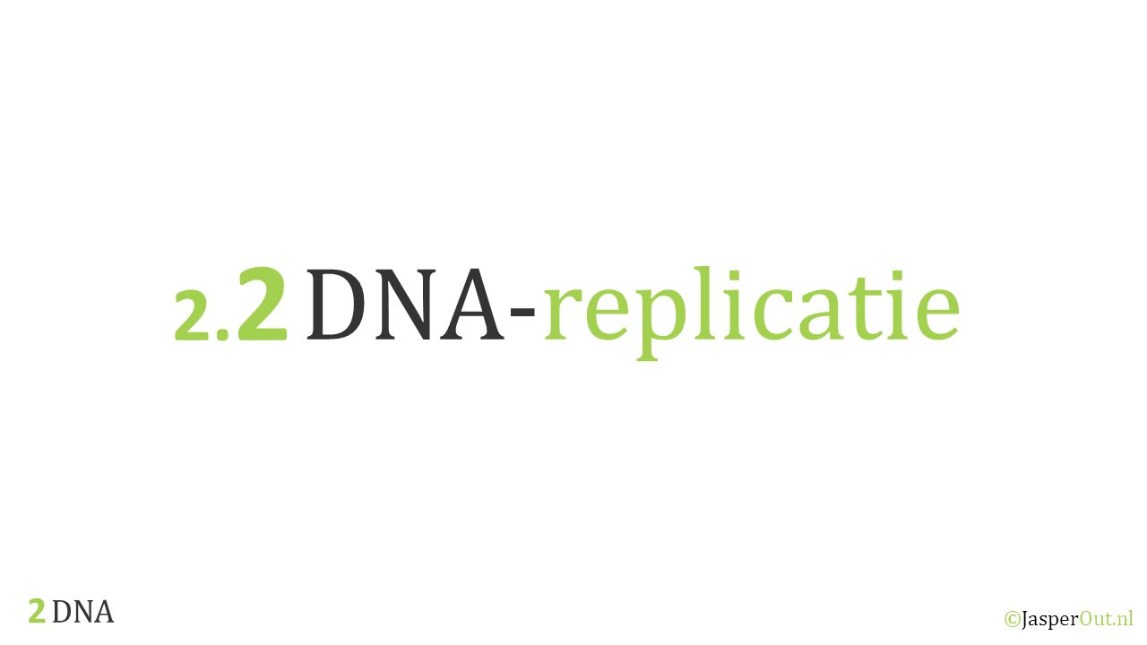 2.2 DNA-replicatie 2 DNA ©JasperOut.nl