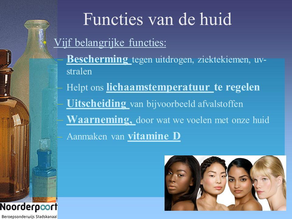 Functies van de huid Vijf belangrijke functies: