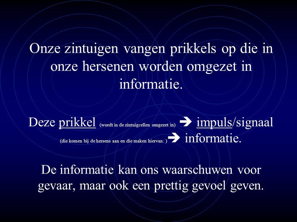 Onze zintuigen vangen prikkels op die in onze hersenen worden omgezet in informatie.