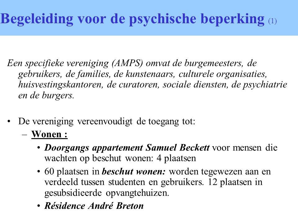 Begeleiding voor de psychische beperking (1)