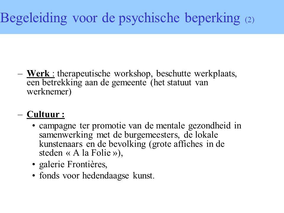 Begeleiding voor de psychische beperking (2)