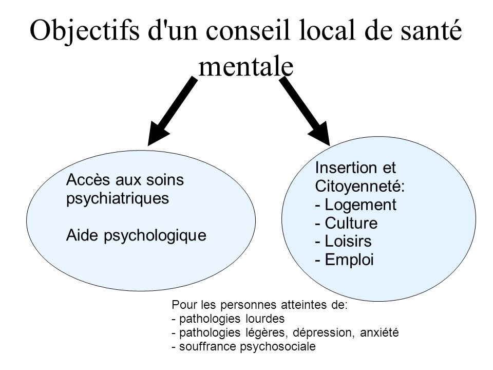 Objectifs d un conseil local de santé mentale