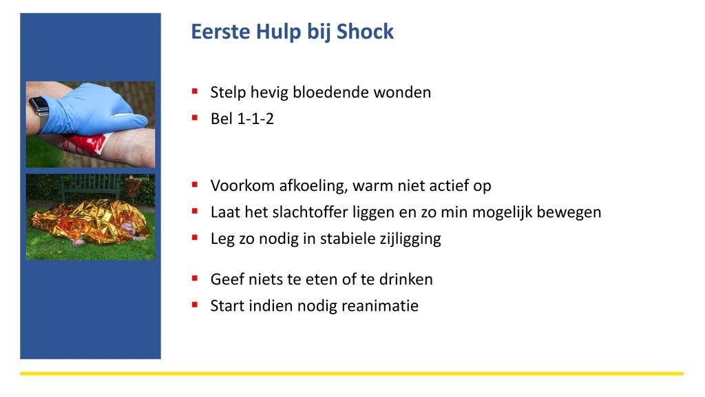 anafylactische shock steek