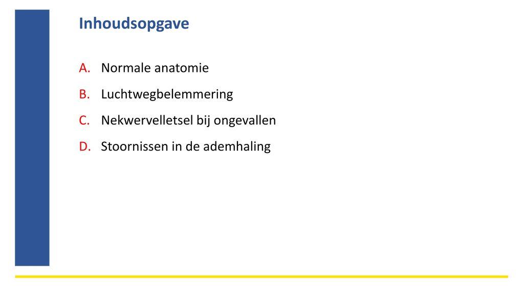 Groß Philip Stubbes Anatomie Des Missbrauchs Ideen - Menschliche ...