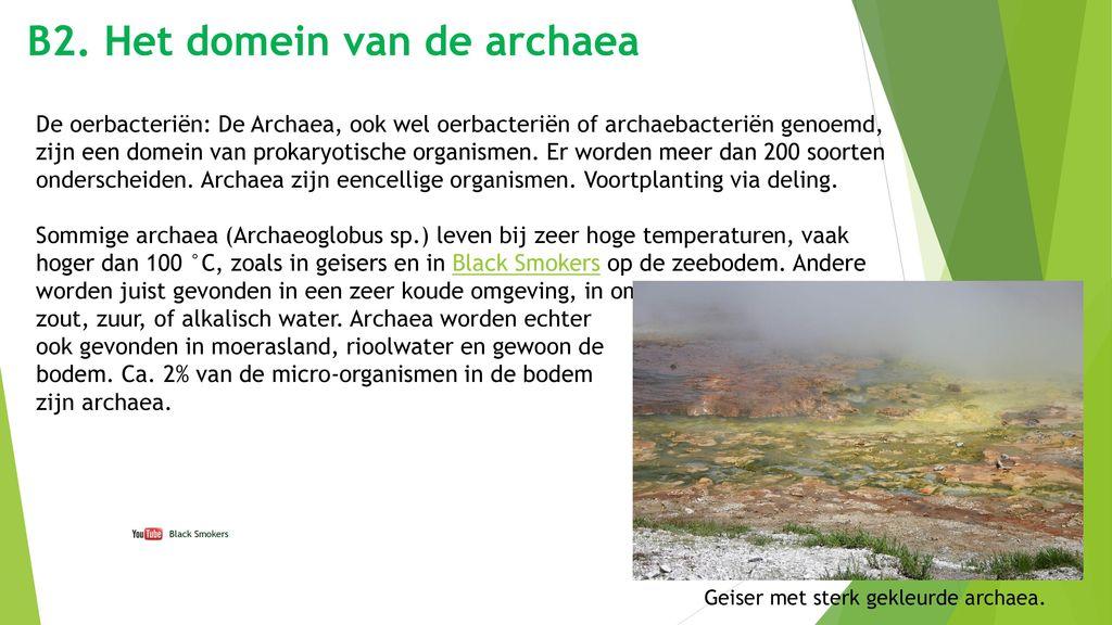 B2. Het domein van de archaea