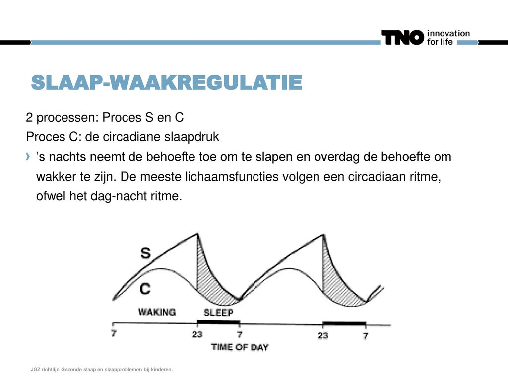 slaap-waakregulatie 2 processen: Proces S en C