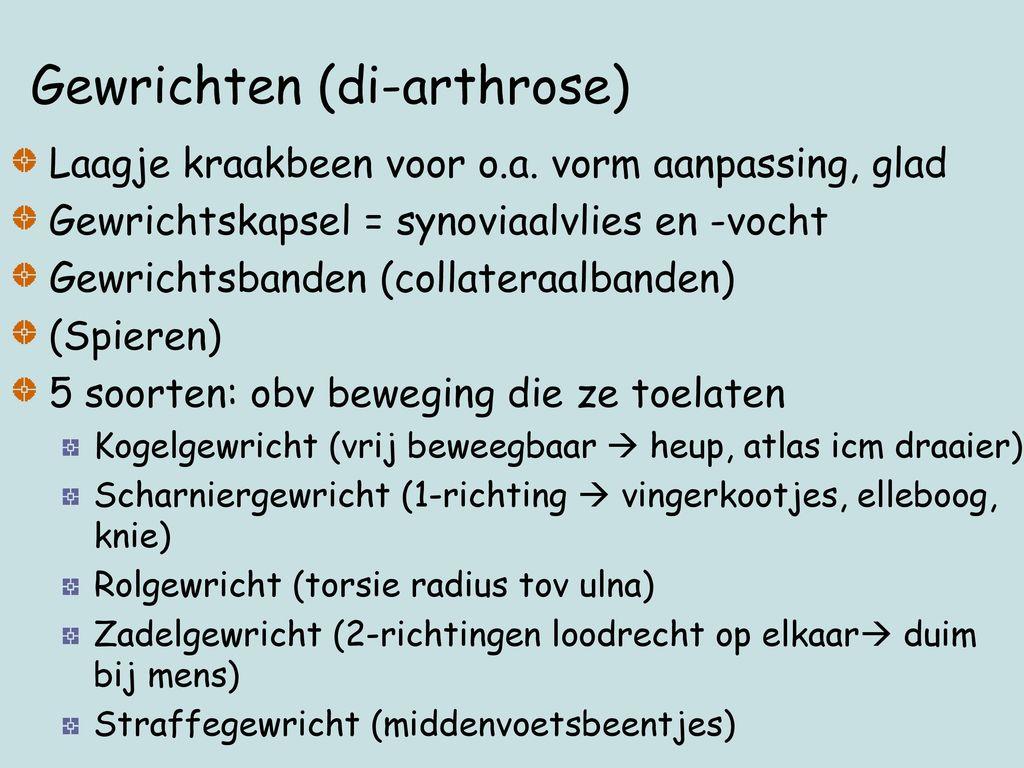 Gewrichten (di-arthrose)