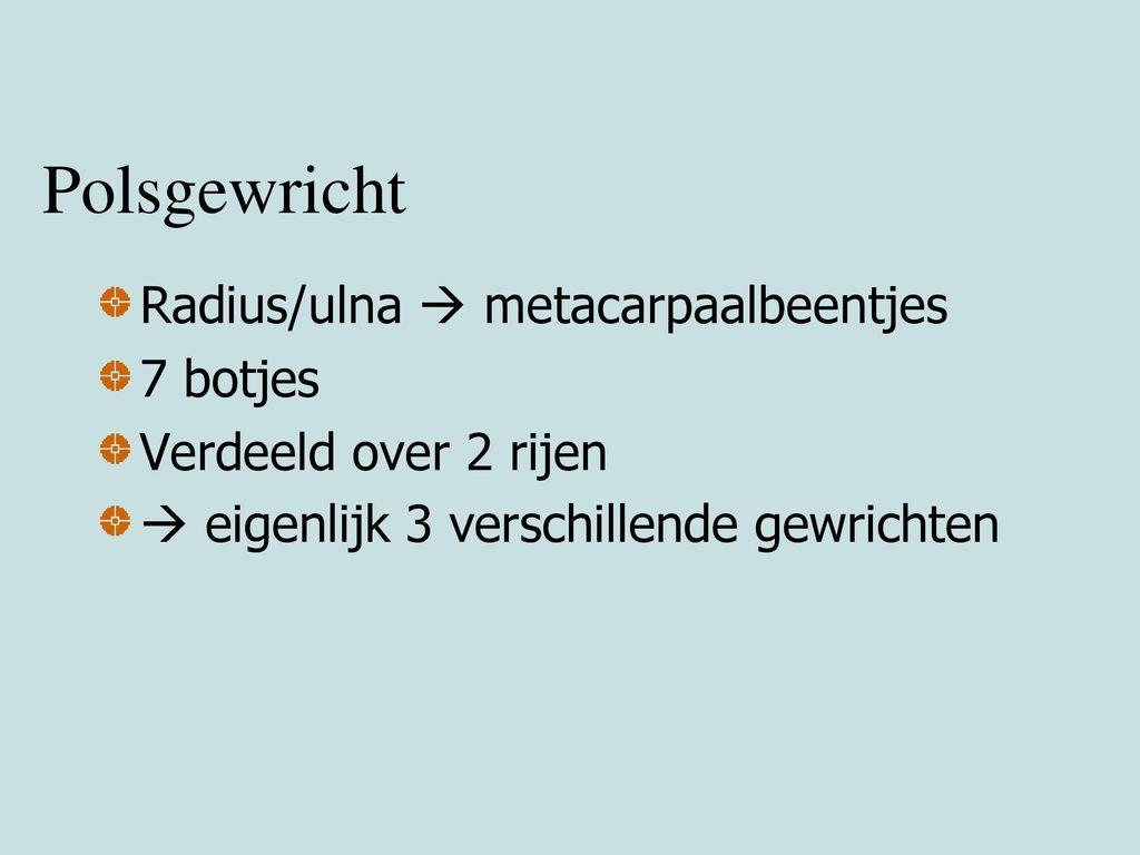 Polsgewricht Radius/ulna  metacarpaalbeentjes 7 botjes