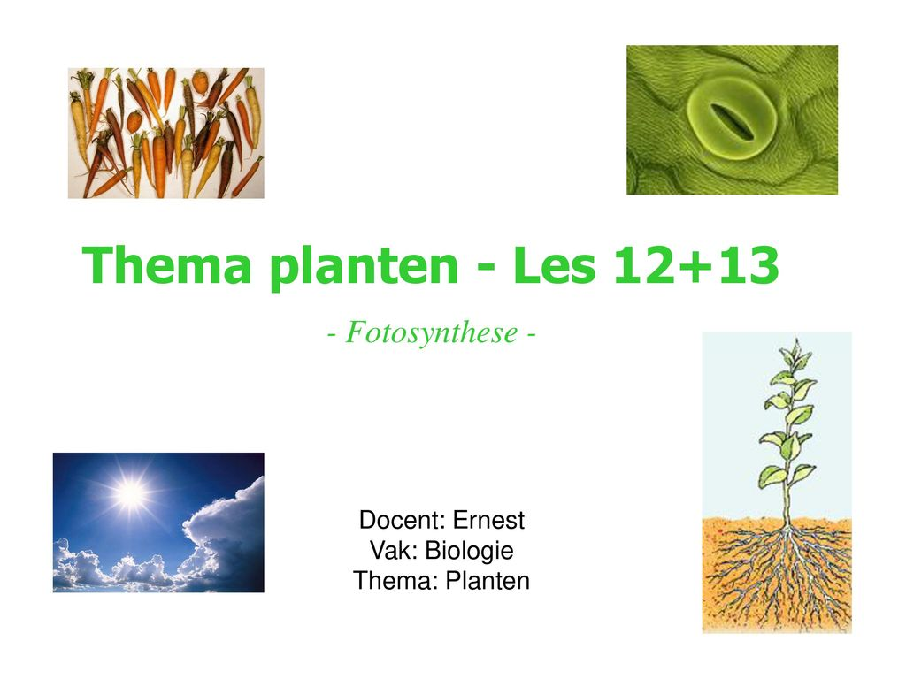 Thema planten - Les 12+13 - Fotosynthese -