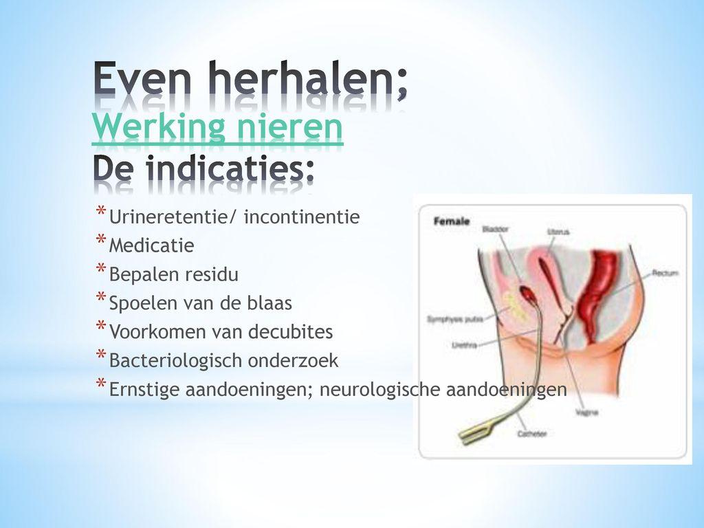 Even herhalen; Werking nieren De indicaties: