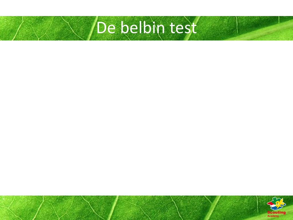thesis.nl belbin test In teams vervul je vaak telkens dezelfde rol de britse onderzoeker meredith belbin onderzocht de belangrijkste teamrollen en omschreef ze nauwkeurig.