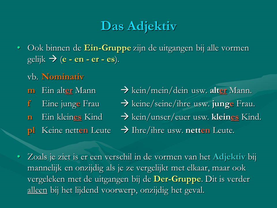 Das Adjektiv Ook binnen de Ein-Gruppe zijn de uitgangen bij alle vormen gelijk  (e - en - er - es).