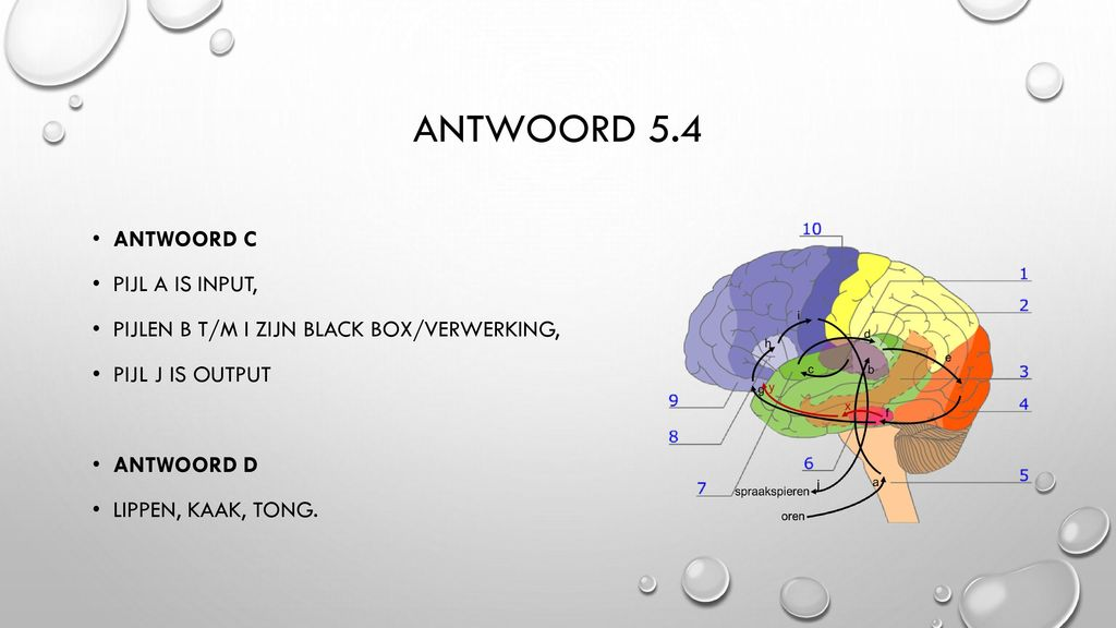 Antwoord 5.4 Antwoord c Pijl a is input,