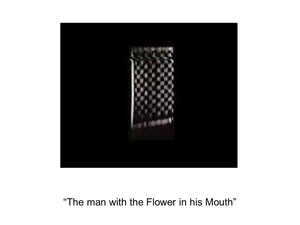 The man with the Flower in his Mouth