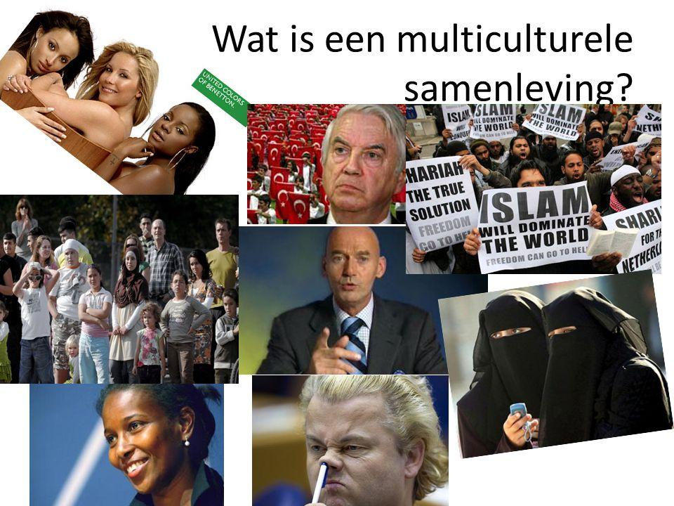 Wat is een multiculturele samenleving