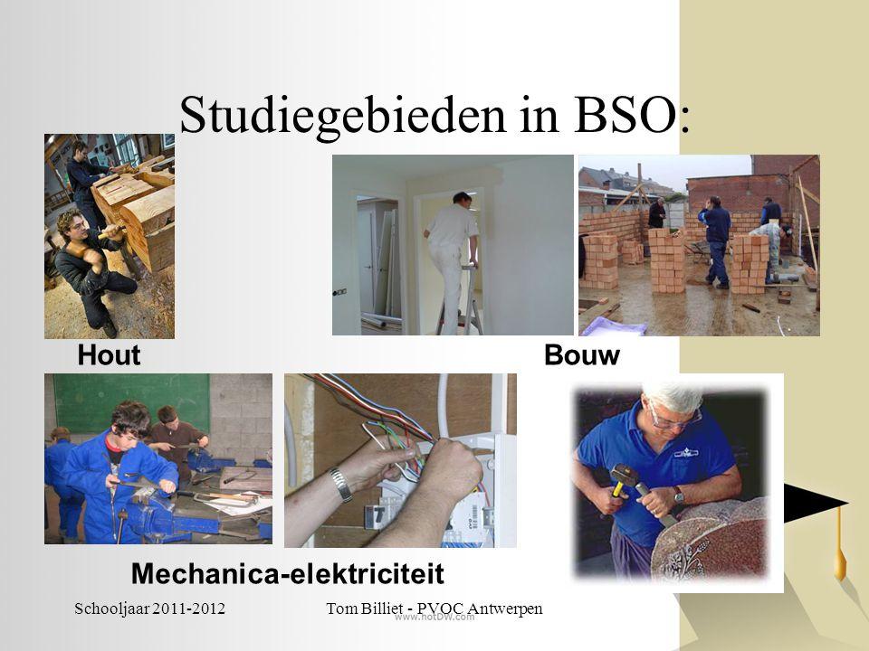 Studiegebieden in BSO: