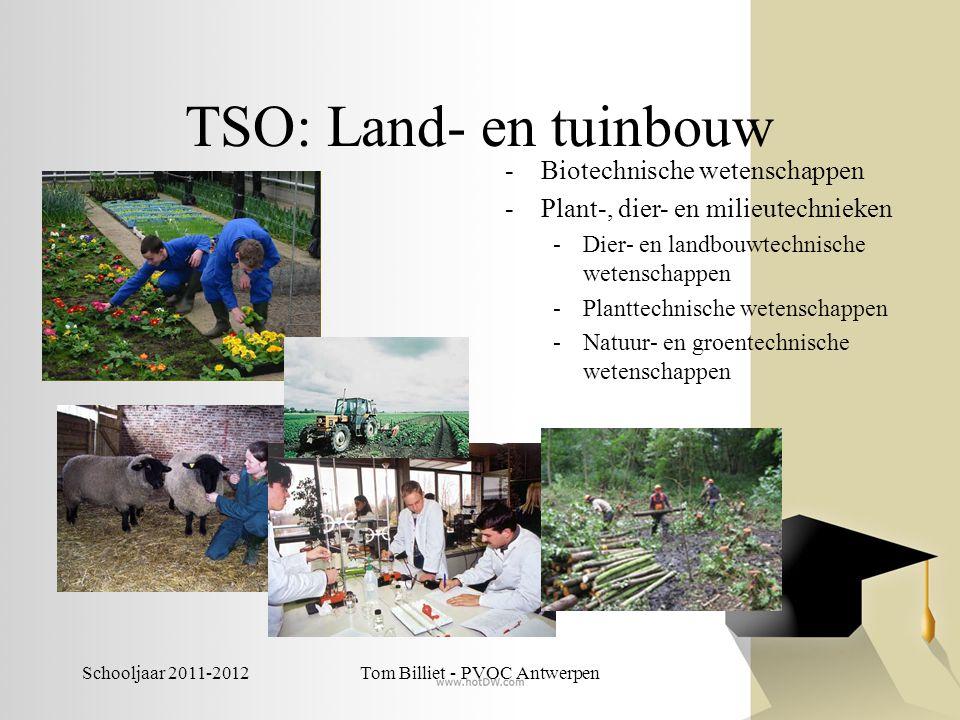 Tom Billiet - PVOC Antwerpen