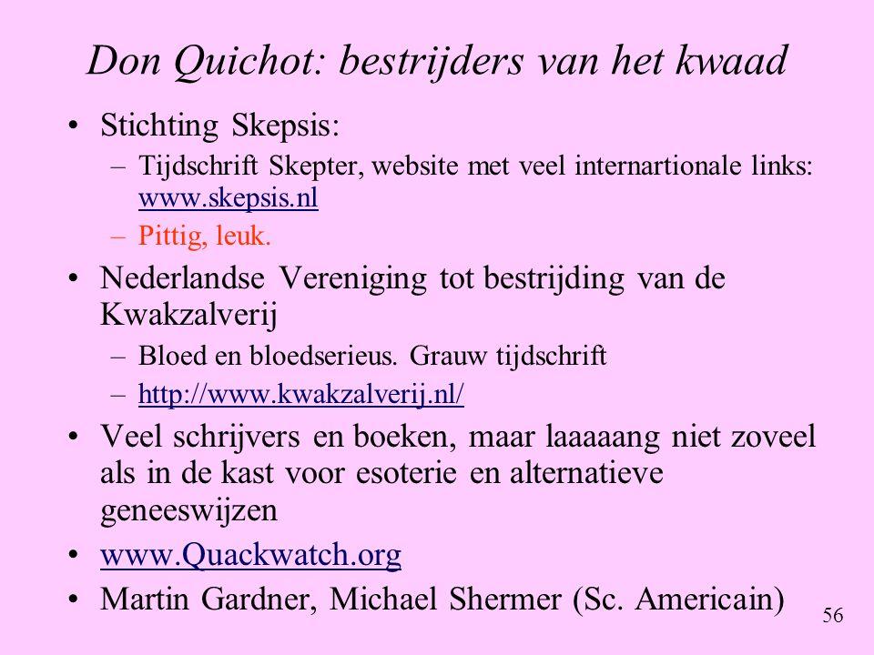 Don Quichot: bestrijders van het kwaad