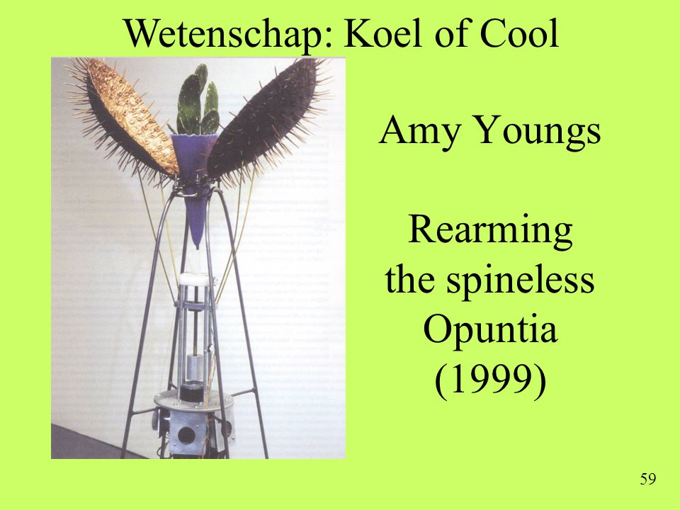 Amy Youngs Rearming the spineless Opuntia (1999)