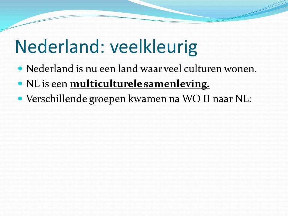 Nederland: veelkleurig