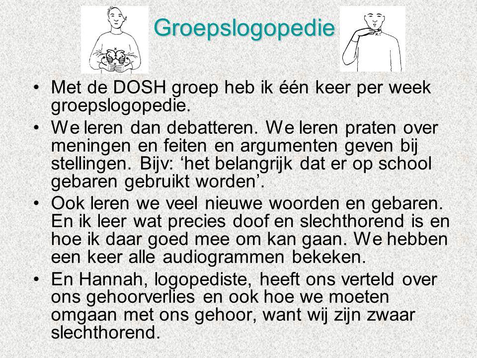 Groepslogopedie Met de DOSH groep heb ik één keer per week groepslogopedie.