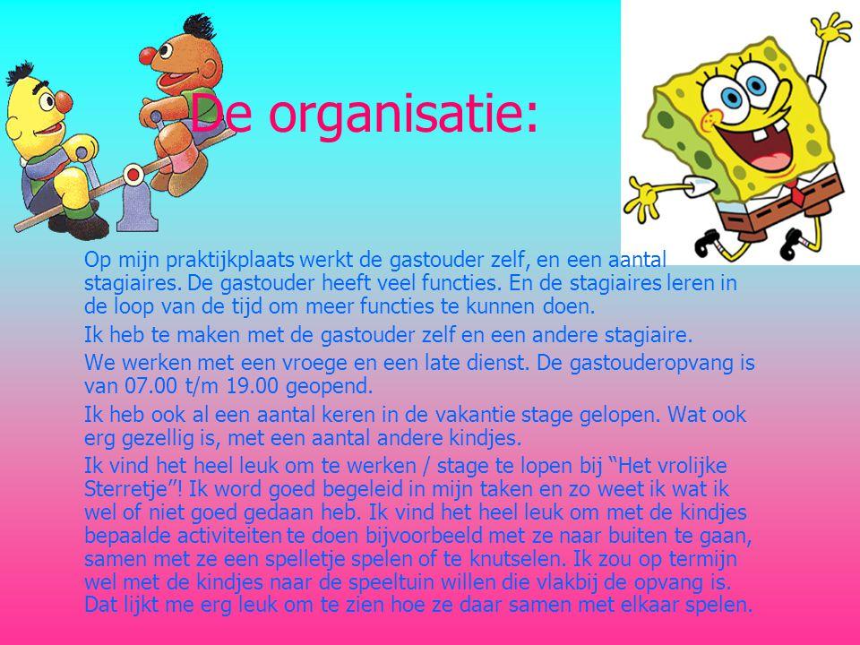 De organisatie: