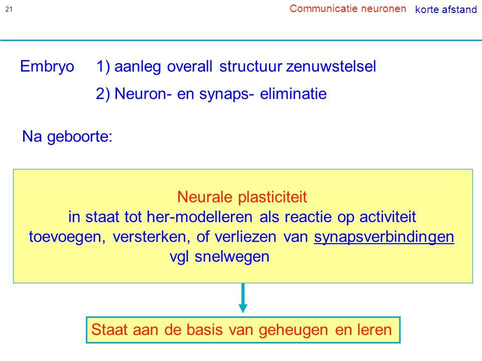 1) aanleg overall structuur zenuwstelsel