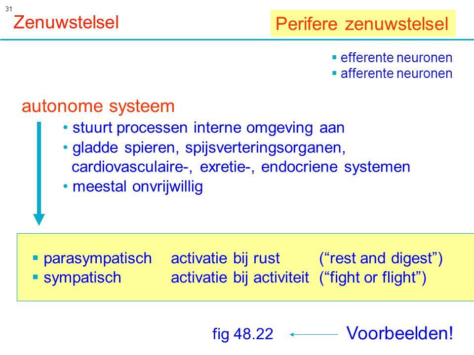 Perifere zenuwstelsel