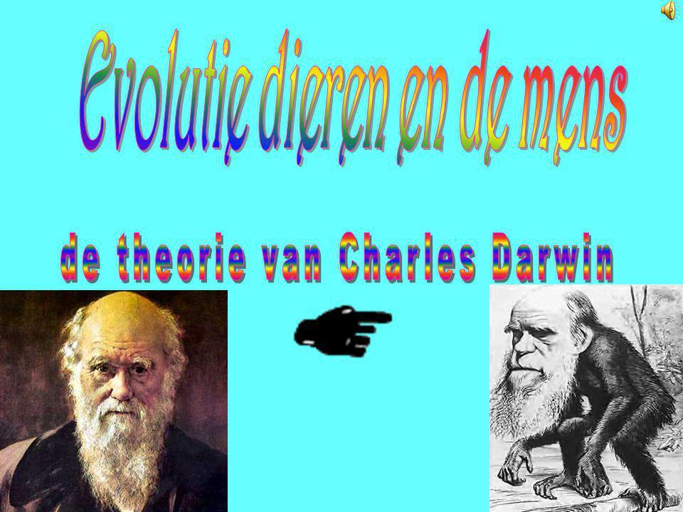 Evolutie dieren en de mens
