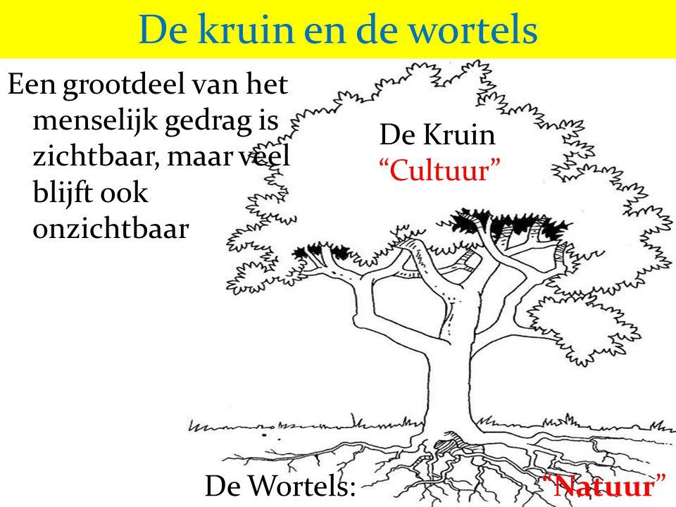 De kruin en de wortels Een grootdeel van het menselijk gedrag is zichtbaar, maar veel blijft ook onzichtbaar.
