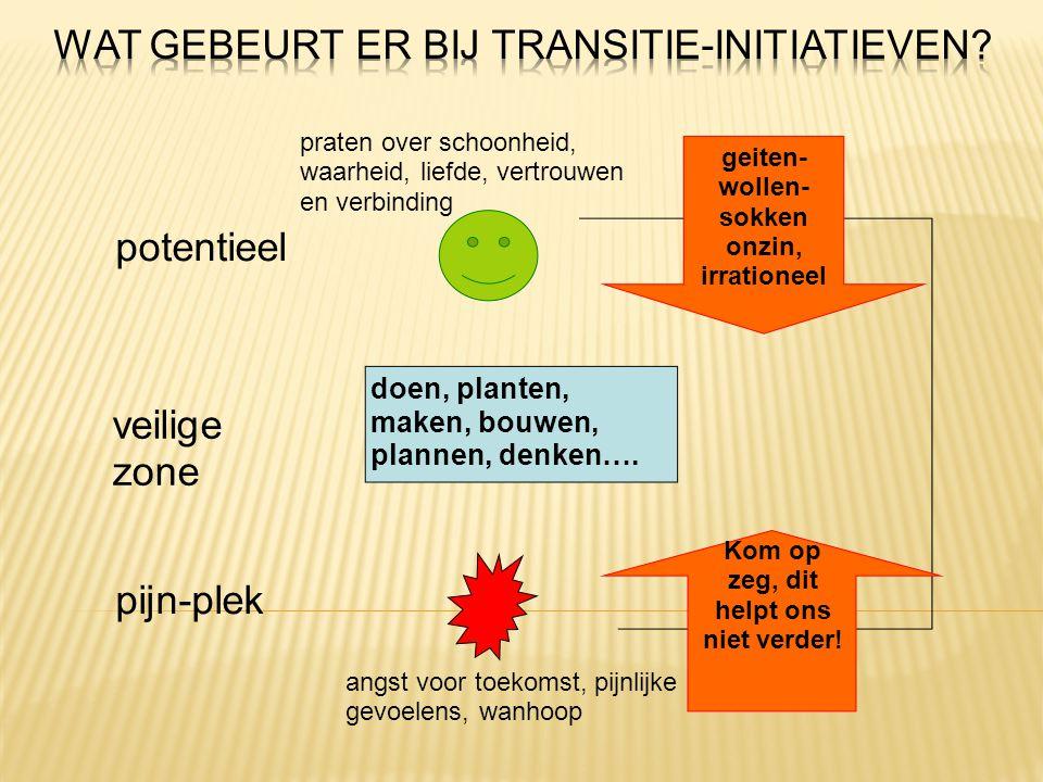 Wat gebeurt er bij Transitie-initiatieven