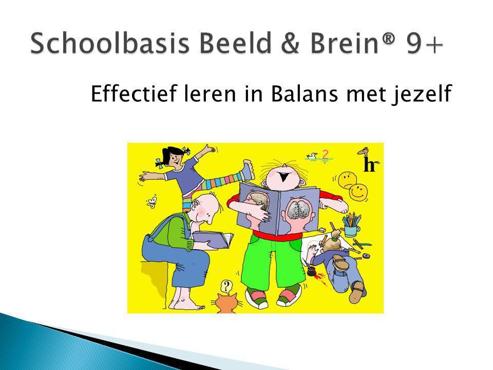 Schoolbasis Beeld & Brein® 9+