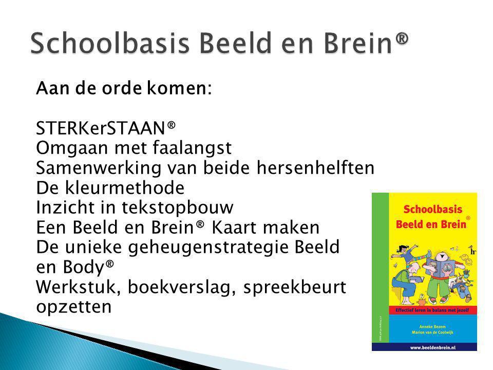 Schoolbasis Beeld en Brein®
