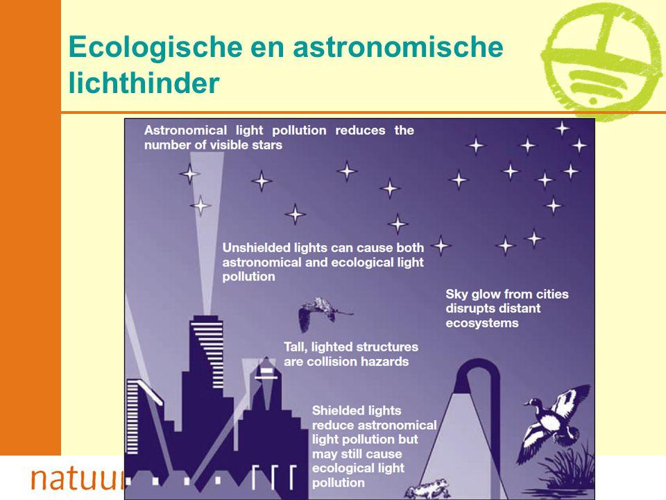 Ecologische en astronomische lichthinder