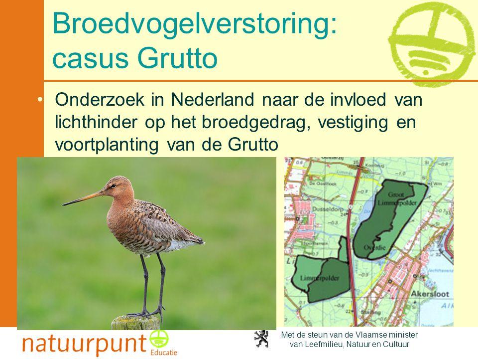 Broedvogelverstoring: casus Grutto
