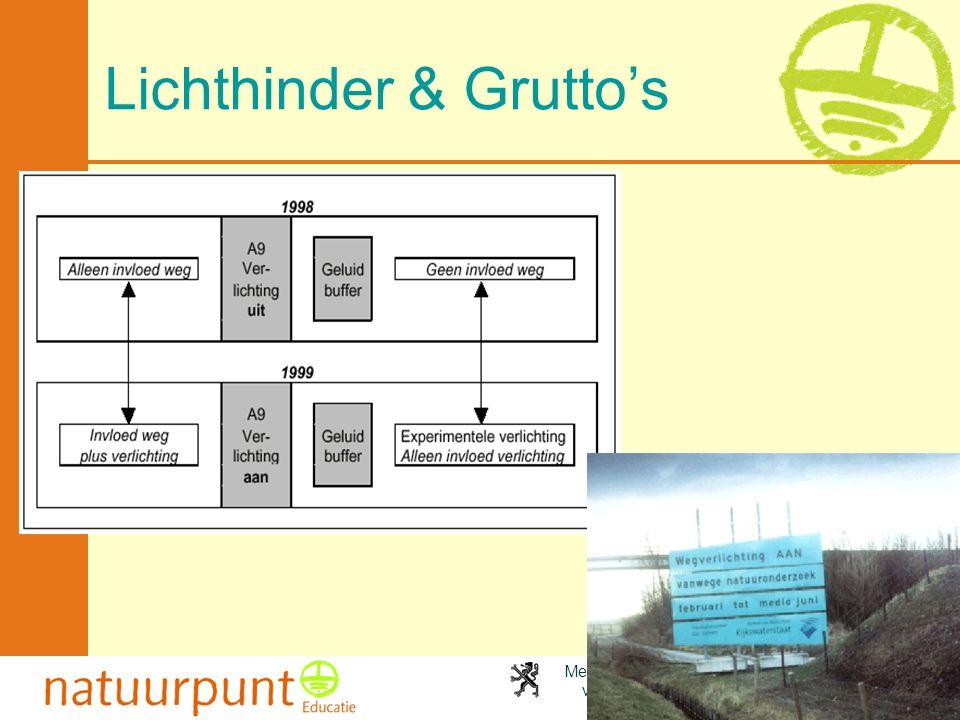 Lichthinder & Grutto's