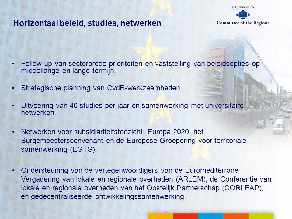 Horizontaal beleid, studies, netwerken