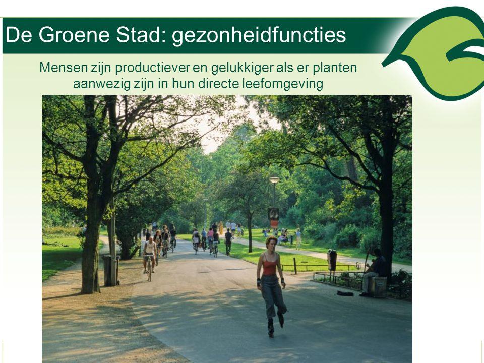 De Groene Stad: gezonheidfuncties