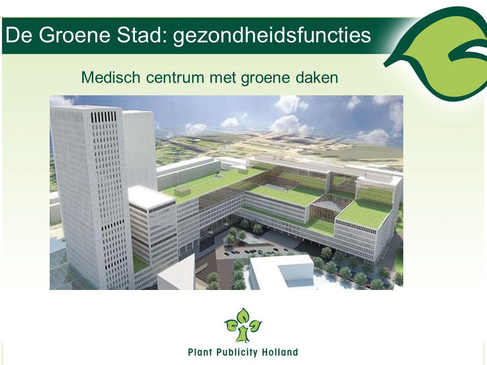 De Groene Stad: gezondheidsfuncties